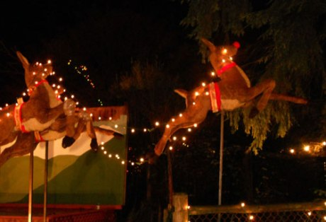 These beautiful vintage reindeer were tucked away in a quiet part of the display.