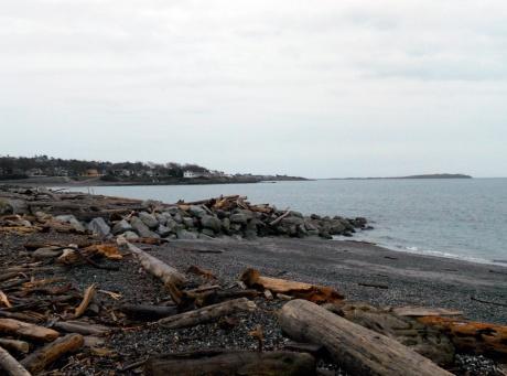 Many shades of grey, Ross Bay.