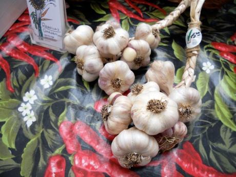 Beautiful garlic braids.