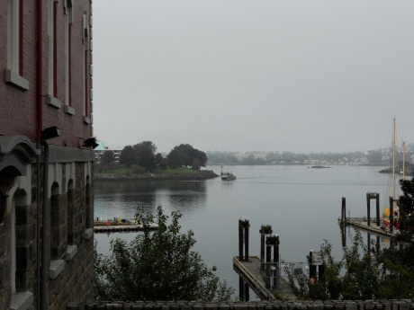 Our beautiful harbour on a foggy morning.