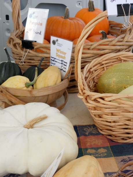So many varieties of squash are available at the farmer's markets.