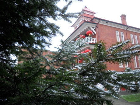 The Chinese Public School with snowy evergreens.