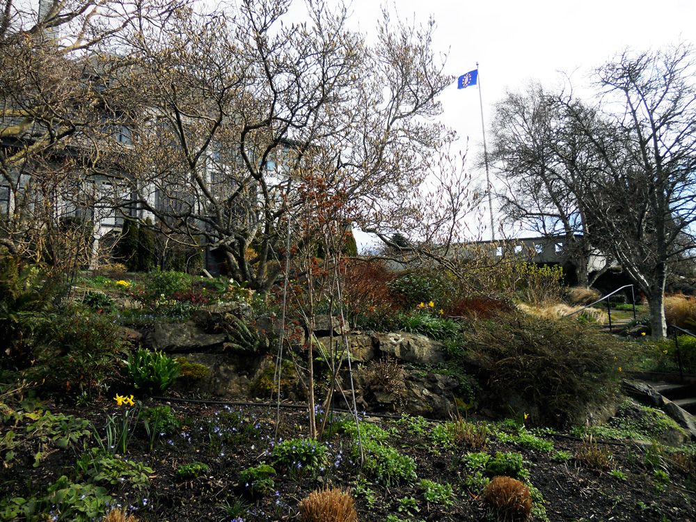 There is a gorgeous rock garden behind the house.