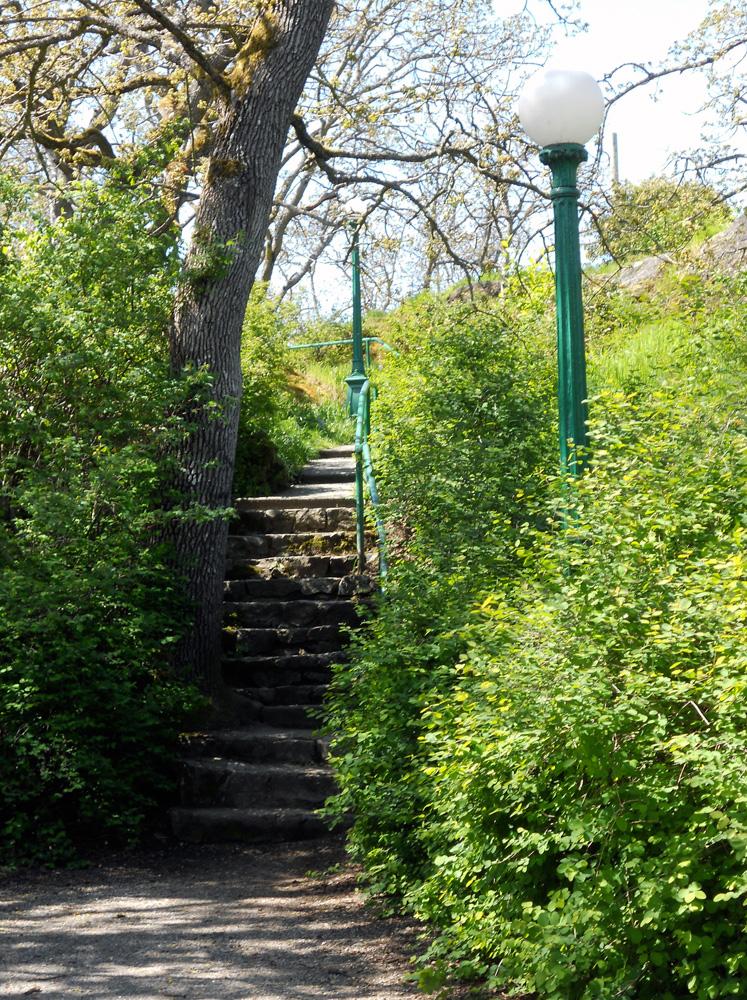 Little neighbourhood path in Oak Bay.
