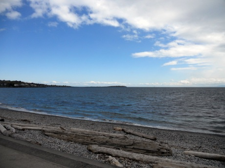 We walked through Oak Bay in beautiful sunshine down to the beach at Ross Bay. The view to the east was blue skies and warm…