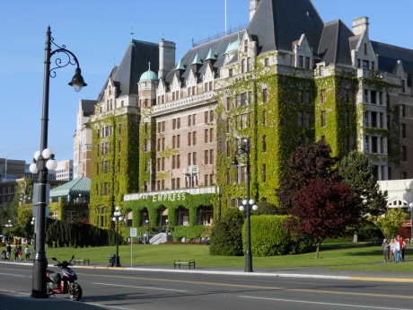 A new growth of bright spring green ivy makes it way across The Empress Hotel.