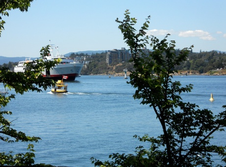 The view from a bench we frequent near The Inn at Laurel Point. The Coho ferry from Port Angeles is arriving.
