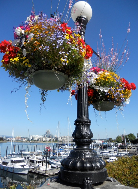 Our famous flower baskets.