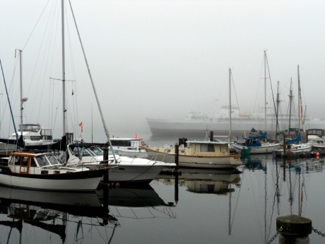 The Coho leaves the harbour through the fog.