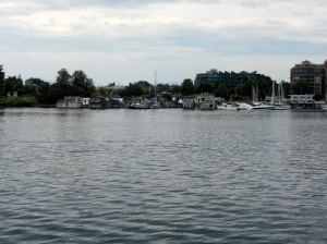 A view of Fisherman's Wharf. Our walks usually take find on that side of the harbour.