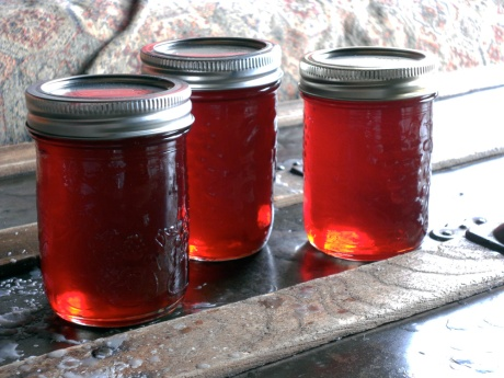 Weird that a yellow-fleshed fruit can make such red jelly! No colour added!