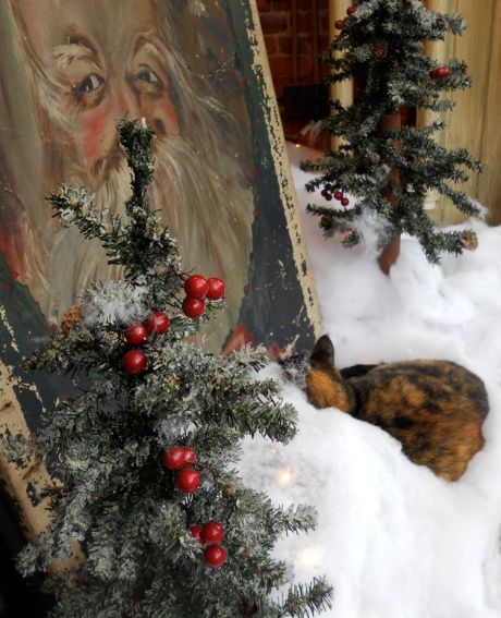 dkn_ChristmasCats1