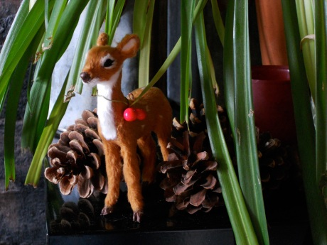 Little deer pokes out from the part of the spider plant the cats chewed away.