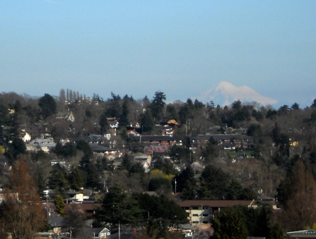 A misty view of Mt Baker in Washington State, taken from Summit Park.