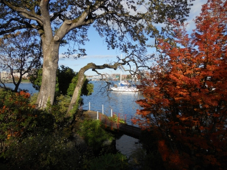 007_DKN_AutumnHarbourView
