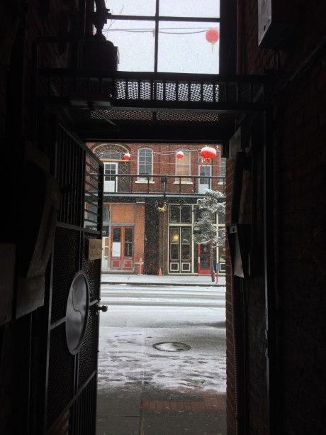 snowday_part2_1