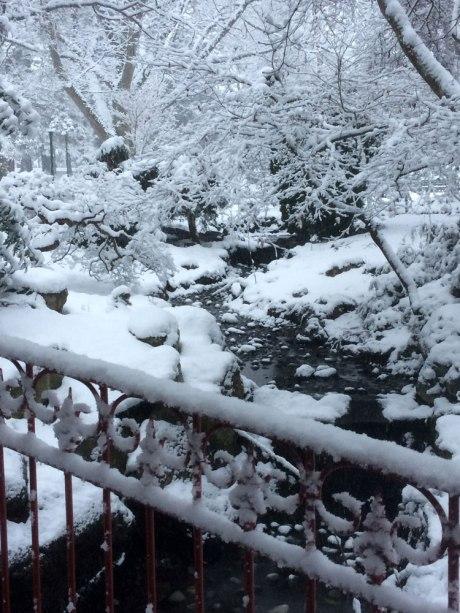 snowday_part3_10