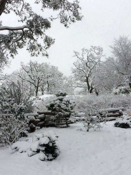 snowday_part3_2