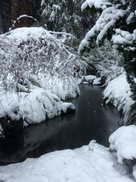 snowday_part3_8